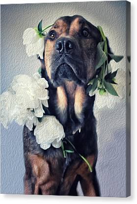 Gentle Love Canvas Print