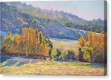 Gentle Shadows Trawool Canvas Print by Lynda Robinson