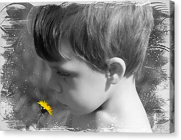 Gentleness Of A Child Canvas Print