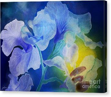 Gently Into The Light Canvas Print by Joan A Hamilton