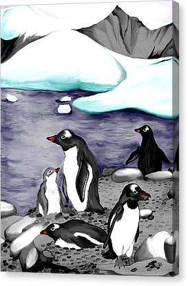 Gentoo Penguins Canvas Print