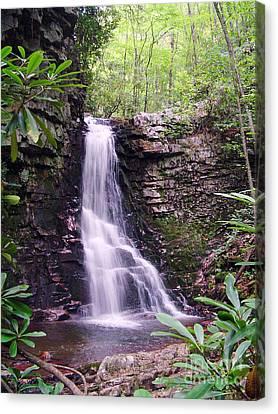 Gentry Creek- Upper Falls Canvas Print