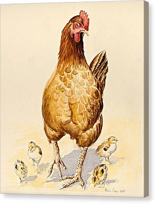 Rooster Canvas Print - George's Hen And Her Chicks by Alison Cooper