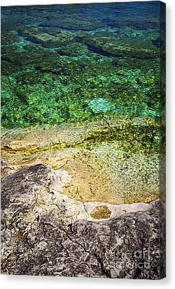 Georgian Bay Abstract I Canvas Print by Elena Elisseeva