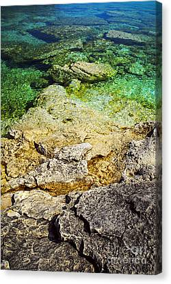 Georgian Bay Abstract II Canvas Print by Elena Elisseeva