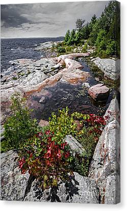 Georgian Bay IIi Canvas Print by Elena Elisseeva
