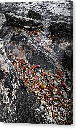 Georgian Bay Rocks Abstract I Canvas Print by Elena Elisseeva