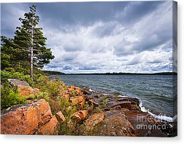 Georgian Bay Shore Canvas Print by Elena Elisseeva