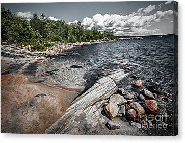 Georgian Bay V Canvas Print by Elena Elisseeva