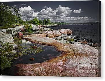Georgian Bay Vii Canvas Print by Elena Elisseeva