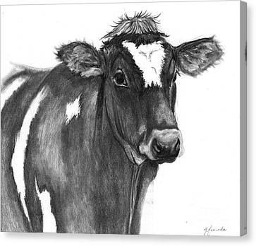 Canvas Print featuring the drawing Georgie by J Ferwerda
