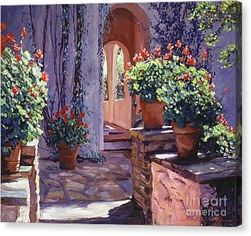Geranium Walkway Canvas Print by David Lloyd Glover