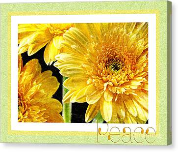 Gerber Daisy Peace 6 Canvas Print by Andee Design
