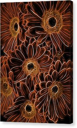 Gerbera Abstract Canvas Print by Garry Gay