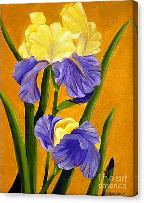 Canvas Print featuring the painting German Bearded Iris  by Shelia Kempf