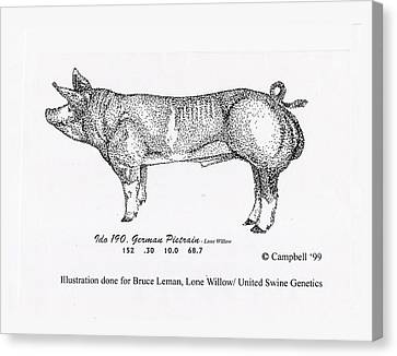Canvas Print featuring the pyrography German Pietrain Boar by Larry Campbell