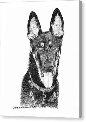 German Shepherd Kimo Canvas Print by Jack Pumphrey
