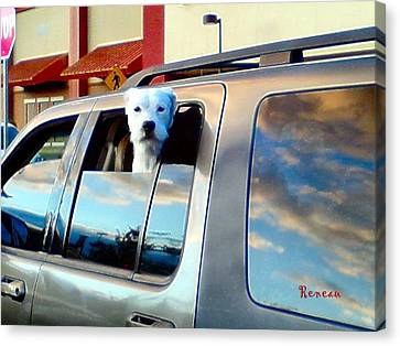 Get Offa My Cloud Canvas Print by Sadie Reneau