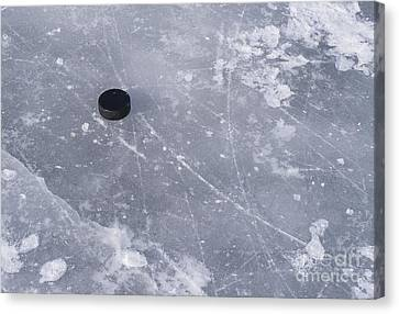 Get The Puck Outta Here Canvas Print by Steven Ralser