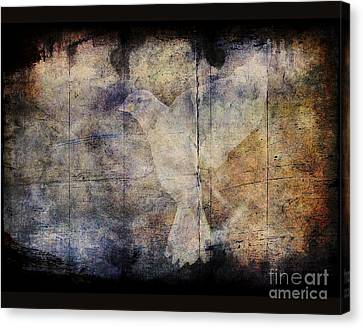 Ghost Bird Canvas Print by Jim Wright