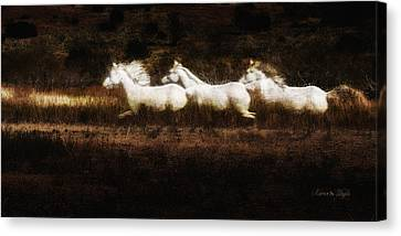 Canvas Print featuring the photograph Ghost Horses by Karen Slagle