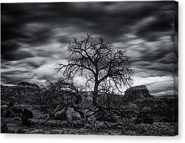 Ghost Ranch Abiquiu New Mexico Georgia On My Mind Canvas Print by Silvio Ligutti
