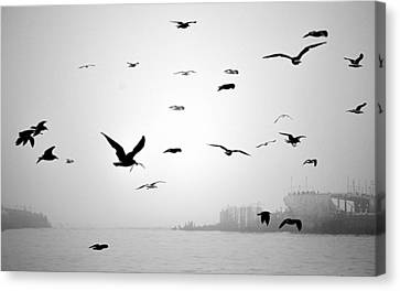 Canvas Print featuring the photograph Ghost Ship by AJ  Schibig