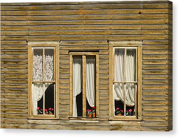 Ghost Town Windows Canvas Print by Shelley Dennis