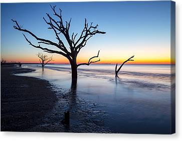 Ghost Trees Of Boneyard Beach 10 Canvas Print