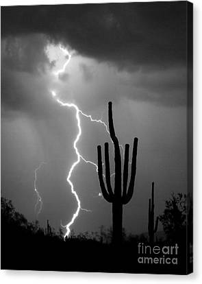 Giant Saguaro Cactus Lightning Strike Bw Canvas Print