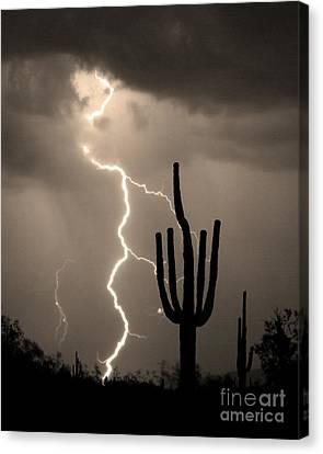 Giant Saguaro Cactus Lightning Strike Sepia  Canvas Print by James BO  Insogna