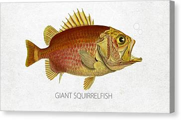 Angling Canvas Print - Giant Squirrelfish by Aged Pixel