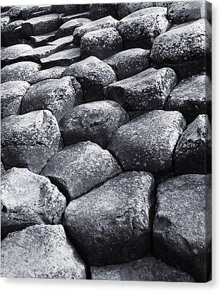 Giant Steps Canvas Print by Jane McIlroy