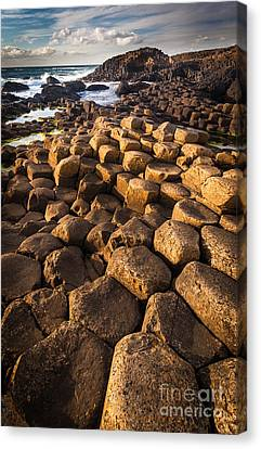 Giant's Causeway Bricks Canvas Print by Inge Johnsson
