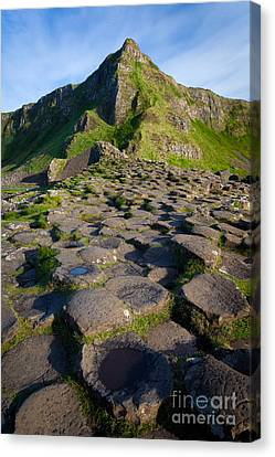 Giant's Causeway Green Peak Canvas Print by Inge Johnsson