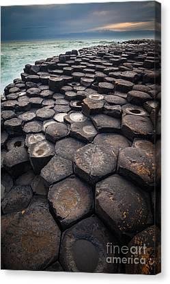Giant's Causeway Pillars Canvas Print by Inge Johnsson