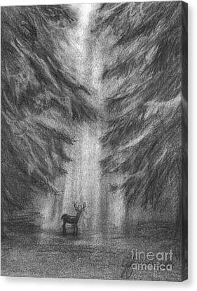 Canvas Print featuring the drawing Giants Of The Woods by J Ferwerda