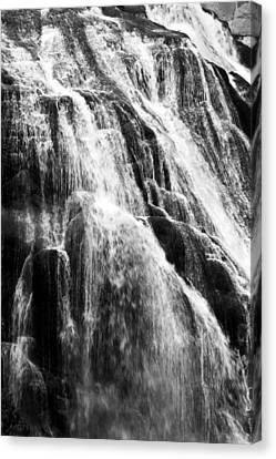 Gibbon Falls Canvas Print by Bill Gallagher