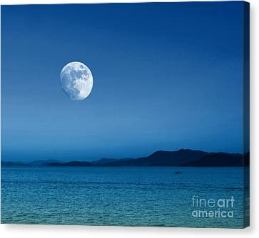 Silver Moonlight Canvas Print - Gibbous Moonscape by Scott Cameron