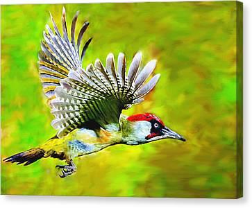 Brown White Sedona Trees Canvas Print - Gila Woodpecker by Bob and Nadine Johnston