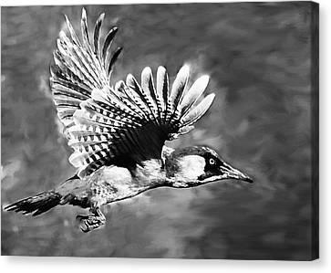 Brown White Sedona Trees Canvas Print - Gila Woodpecker Sedona Arizona by Bob and Nadine Johnston