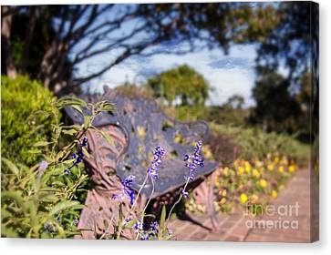 Gilcrease House Garden Flower Canvas Print by Tamyra Ayles