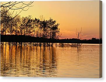 Gilded Sunset Canvas Print