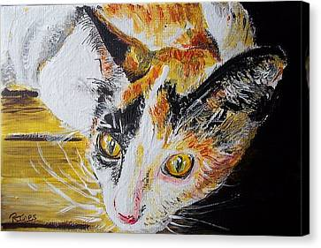 Ginger Stray Cat Canvas Print