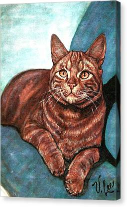 Ginger Tabby Canvas Print