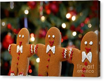 Gingerbread Men In A Line Canvas Print by Amy Cicconi