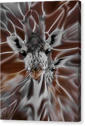 Giraffe Abstract Canvas Print - Giraffe Abstract by Ernie Echols