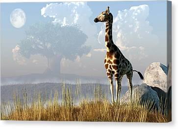 Giraffe And Giant Baobab Canvas Print