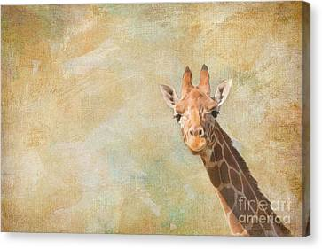 Giraffe Art Canvas Print