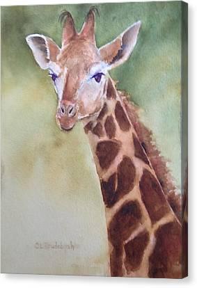 Giraffe Canvas Print by Cynthia Roudebush